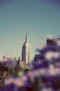 The Empire State Building von Darren Martin