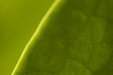 20080125-002-2