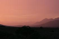 African Skyscape by Carmen Davila