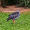 La20090526ls002-parque-das-aves-bird-park-tach-southern-screamer