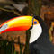 La20090526ls049-parque-das-aves-bird-park-tucano-toco-tucan