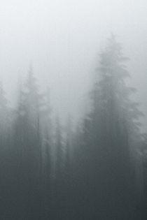 Alpine Ramble; Romstad 09 by Derek Dix