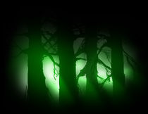 Eerie Forrest by Thomas  Provencher