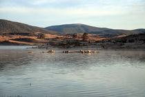 Mountain lake by michal gabriel