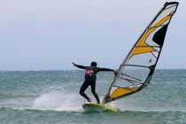 surf skills von Danislav Mironov