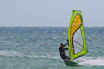 Surf racing von Danislav Mironov