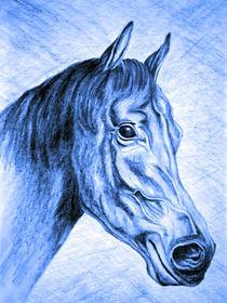 Pferd-blue