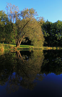 Herbst im Spiegel by Wolfgang Dufner