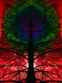 Rainbow Chaktree von Branden Thompson
