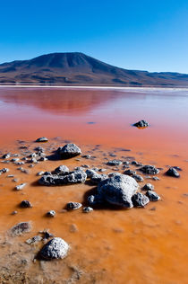 Red lake at Uyuni von fbphoto