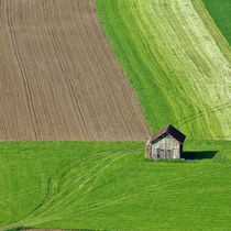 Fields in Switzerland von fbphoto