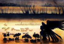 Crane Swamp by Alver de Ocampo