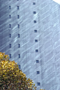 Concrete wall with windows by michal gabriel