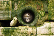 pipe hole in the stone wall von michal gabriel