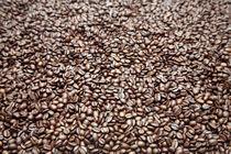 Coffee beans by michal gabriel