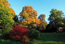 Farben des Herbstes von Wolfgang Dufner