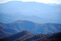 Roane-mountain-3