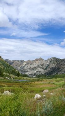 Lamoille Canyon by S A