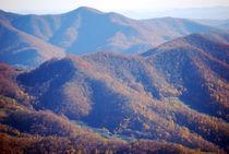 Roane-mountain-4