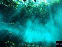 Cenote von Damien Schumann