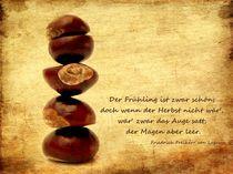 Friedrich-freiherr-von-logau-kastanienzitatekarte