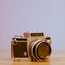 Mg-2386