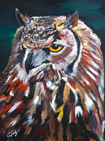 Great Horned Owl by Craig S
