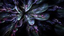 Midnight Bubbly Burst von Branden Thompson