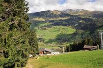 Schweizidyll