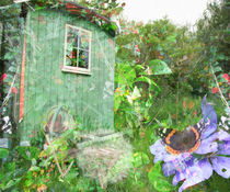 The Garden Shed by Lis Todd