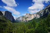 Yosemite National Park von RicardMN Photography
