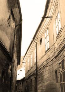 Street lines 1/3 by Katalin Szasz-Bacso