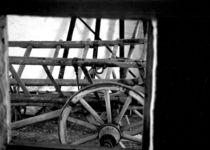 Cart-detail-6