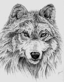 wolf von Deb Thompson