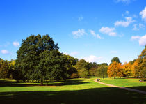 Hyde Park_06 by mvg foto