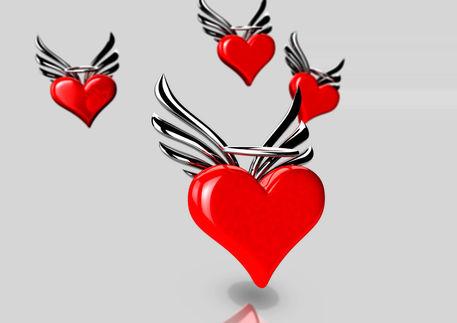 Heartwings04