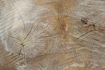 Holzmaserung von Juana Kreßner