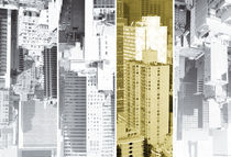 New-york-quartett-metropolis-honey-5-4