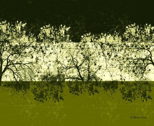 Green-future