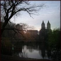 Central Park I von Martin Lipmann