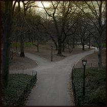 Central Park II von Martin Lipmann