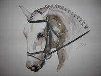 Pferd von Sally Sylvia Nemeth