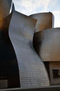 Guggenheim Museum Bilbao - 1 by RicardMN Photography
