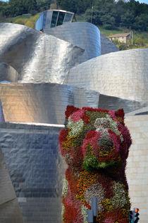 Guggenheim Museum Bilbao - 6 by RicardMN Photography
