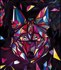 Coyote by drasik