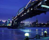 Borodinski Bridge by Dmitry Egorov