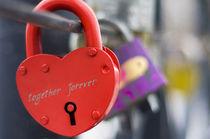 love padlock von Vadym Sapatrylo