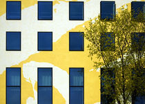 Yellow facade in Berlin by RicardMN Photography