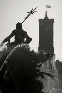 Neptune Fountain and Rotes Rathaus tower by RicardMN Photography