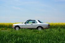 Oldtimer Mercedes Benz 123 - 230 CE Coupe by Katrin Lantzsch